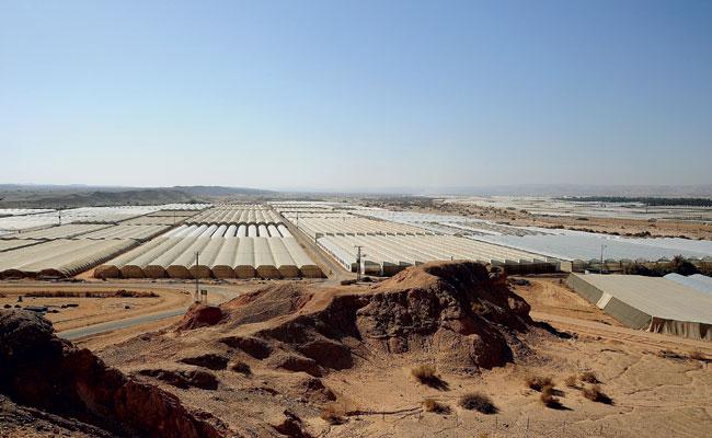 Estufas do Moshav Hatzeva, no deserto de Arava, sul de Israel