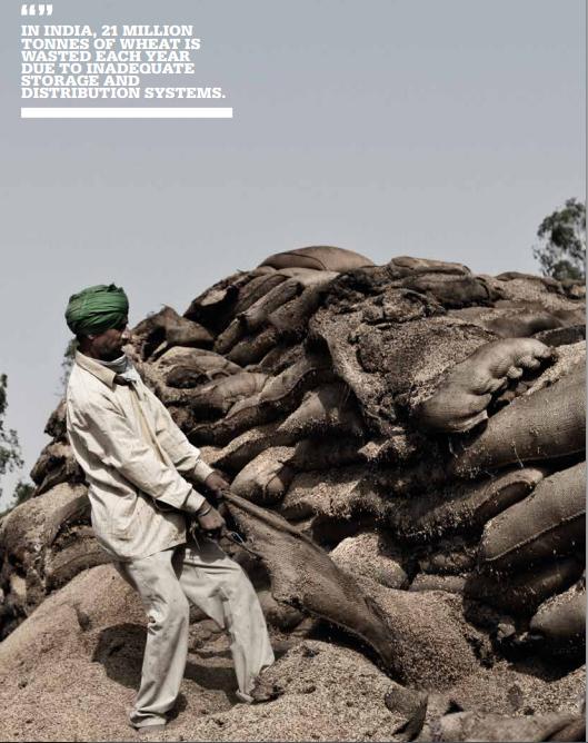 """"""" Na Índia, 21 milhões de toneladas de trigo são desperdiçadas a cada ano devido à práticas inadequadas de armazenamento e distribuição."""""""