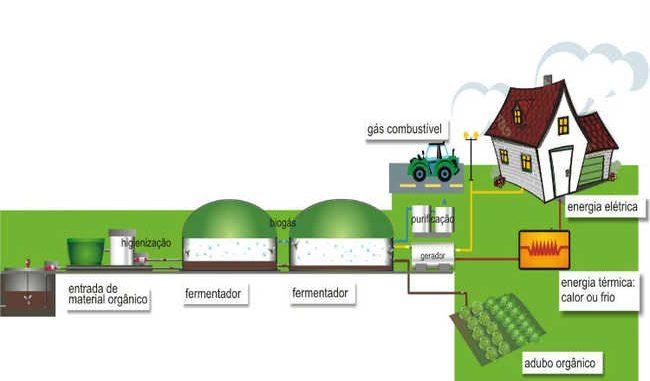 8421c31370c O papel dos biodigestores na agropecuária sustentável