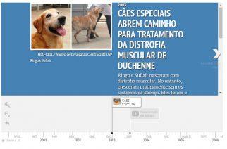 Cães especiais abrem caminho para tratamento da Distrofia Muscular de Duchenne